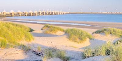Afbeelding bij Tour of the dune landscape Neeltje Jans