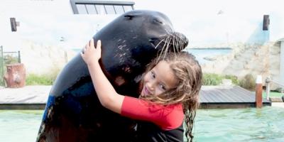 Afbeelding bij Kinderfeestje brullen met zeeleeuwen